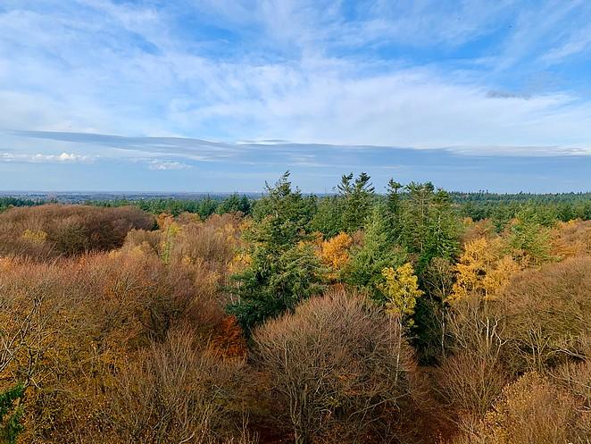 uitkijktoren-herfst