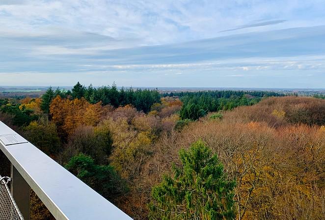 uitkijktoren-utrechtse-heuvelrug