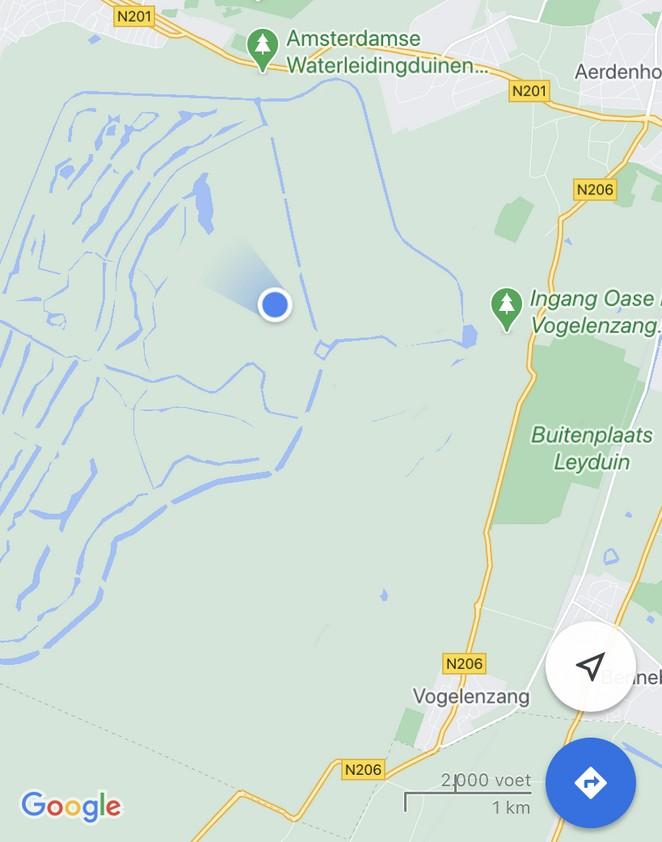 waar-zitten-herten-in-de-amsterdamse-waterleidingduinen