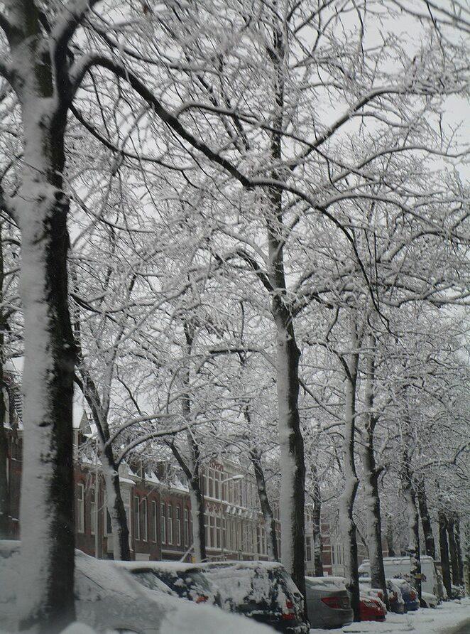den-haag-sneeuw
