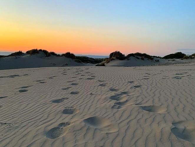 follow-my-footprints-duinen-den haag