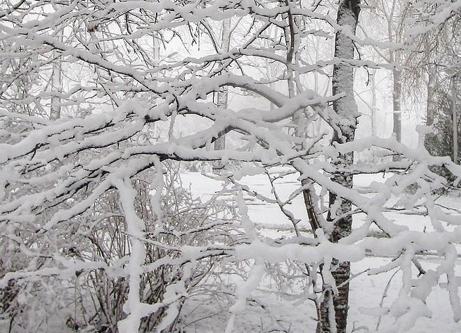 winterse-plaatjes-nederland