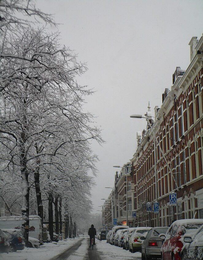 sneeuw-regentesselaan