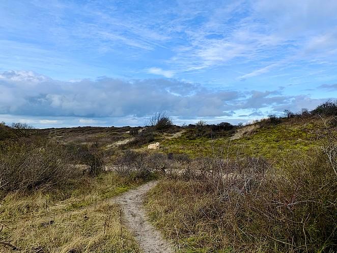 wandelen-duinen-kijkduin