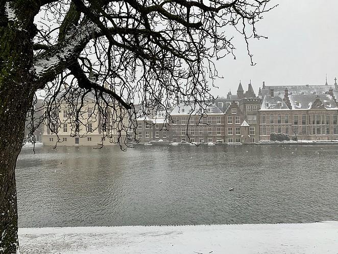 hofvijver-7-februari-2021