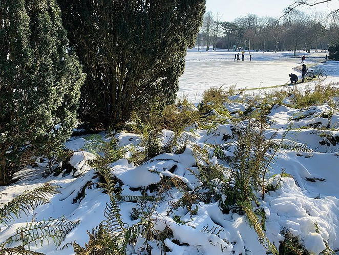 ijs-zuiderpark-den-haag