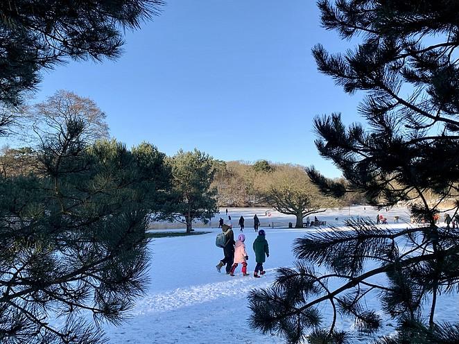 mooie-plek-om-te-schaatsen-in-den-haag