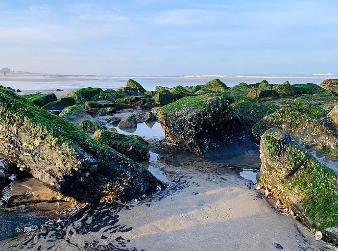 hollandse-duinen-strand