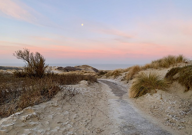 hollandse-duinen-wandelen