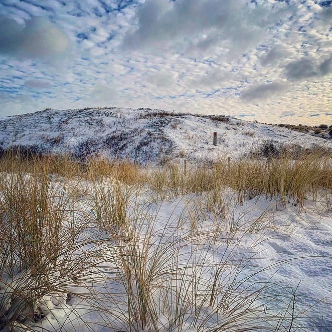 hollandse-duinen-winter