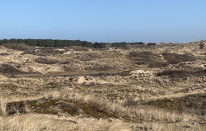 huisje-hollandse-duinen