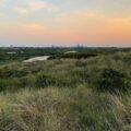 nationaal-park-hollandse-duinen