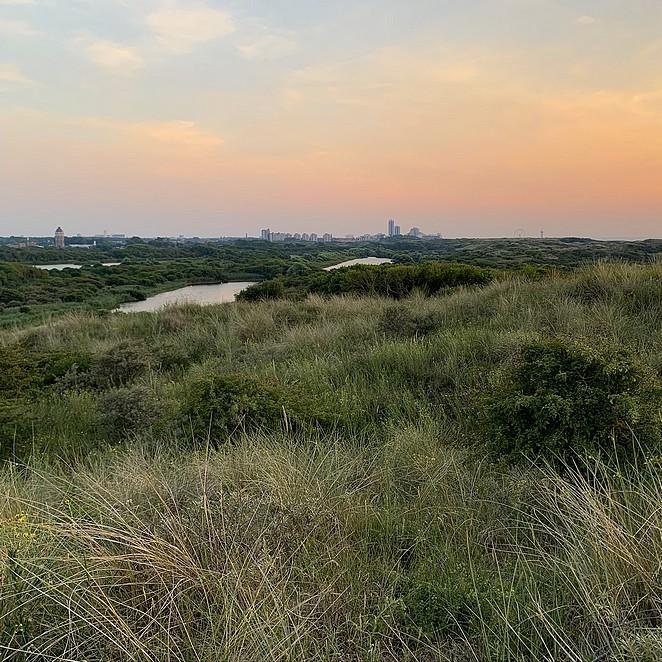 Nationaal Park Hollandse Duinen (NPHD): waar ligt het en welke mooie (natuur)gebieden horen bij NP Hollandse Duinen?