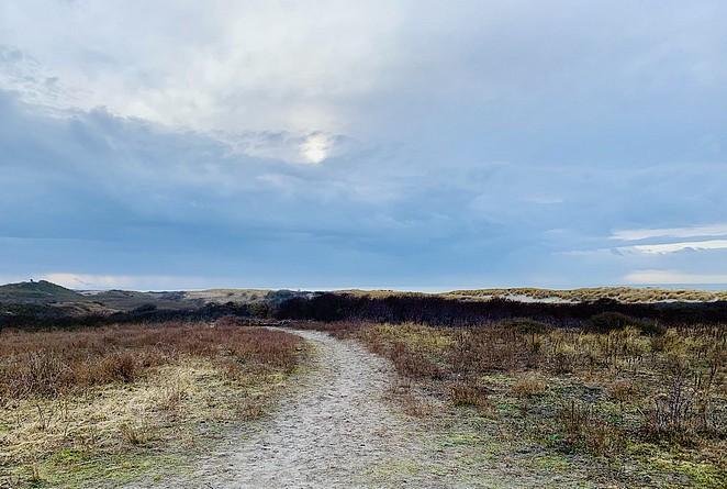 nationaal-park-hollandse-duinen-natuurgebieden