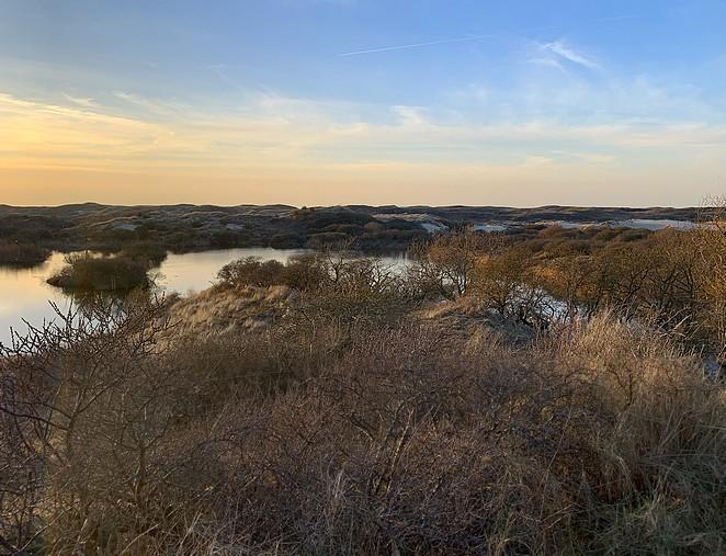 water-nationaal-park-hollandse-duinen-nphd