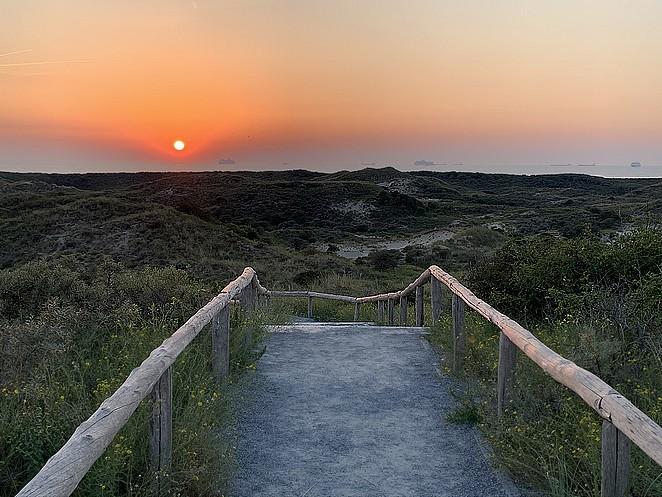 nationaal-park-hollandse-duinen-zonsondergang