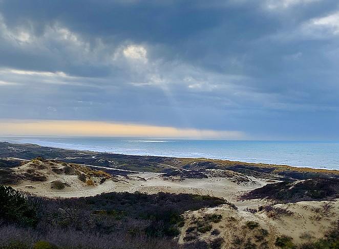 np-hollandse-duinen-zee