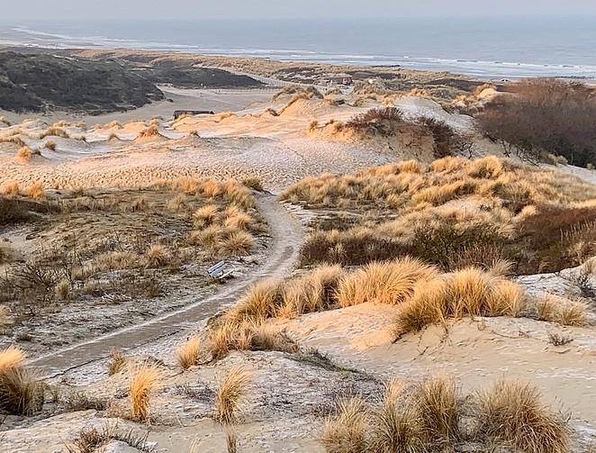 np-hollandse-duinen