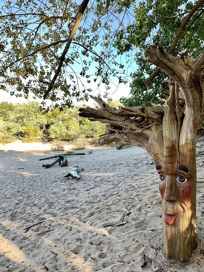 speelplek-in-de-duinen
