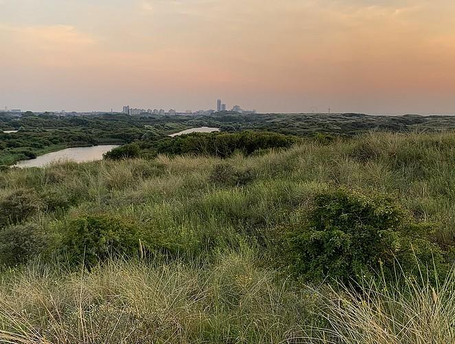 waar-ligt-nationaal-park-hollandse-duinen