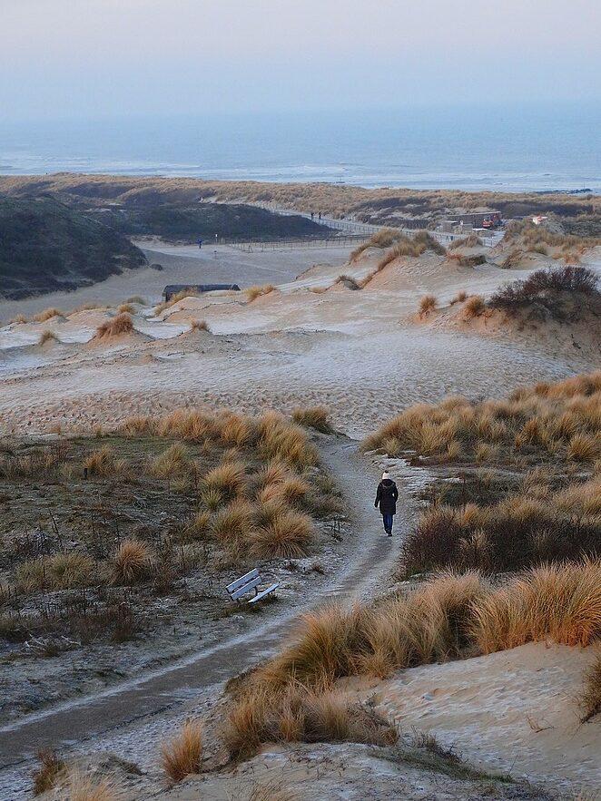 wandelen-hollandse-duinen