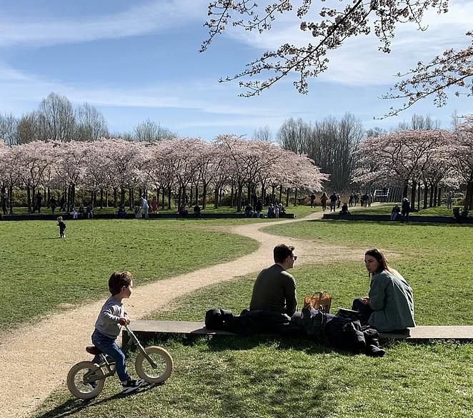 bloesempark-met-peuter