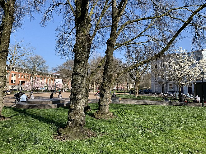 huijgenspark-den-haag-eind-maart