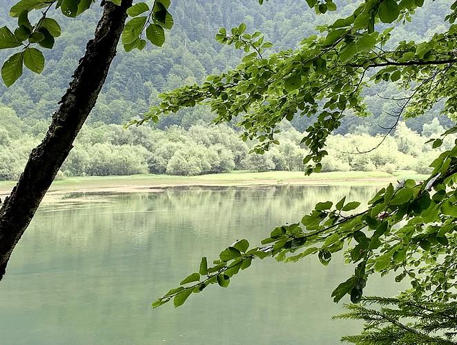 biogradsko-jezero-np