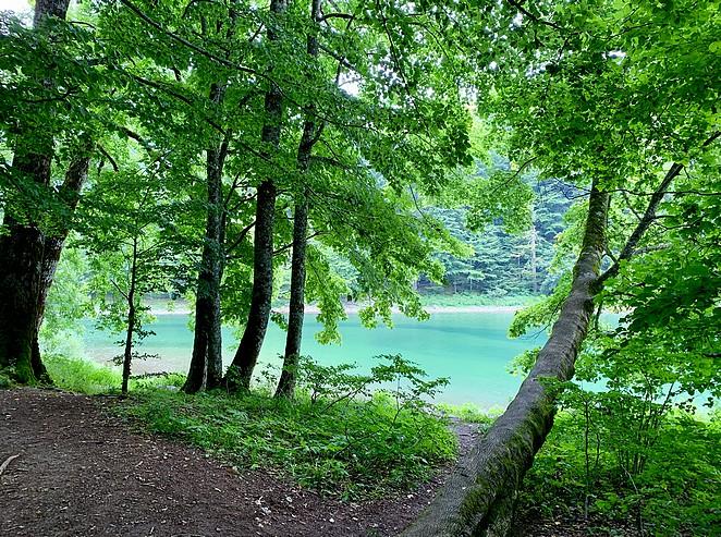 biogradsko-jezero