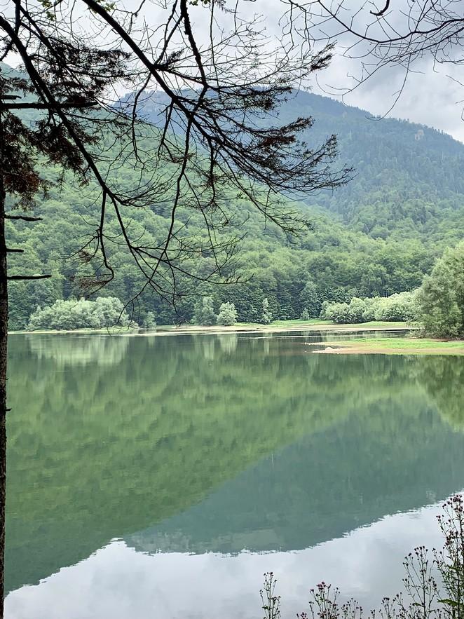 biogradsko-lake-montenegro