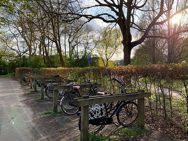 fietsen-hyacintenbos