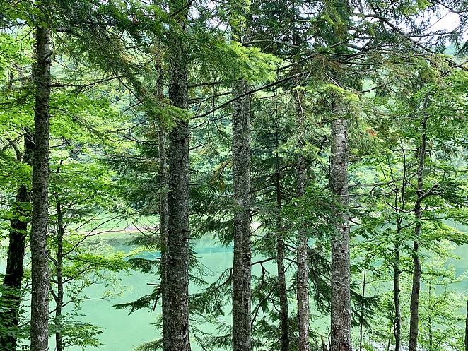 lake-biograd-wandeling