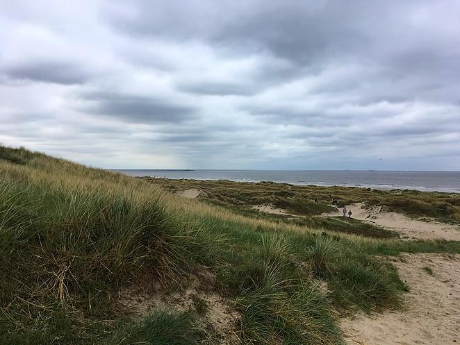 duinen-bij-wijk-aan-zee