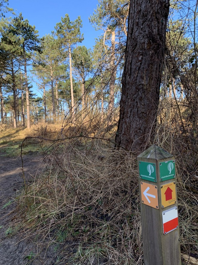 dutch-coastal-trail