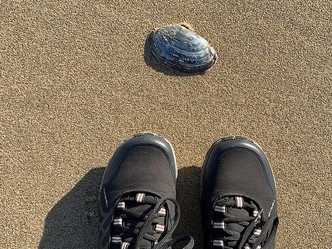 kustpad-wandelen