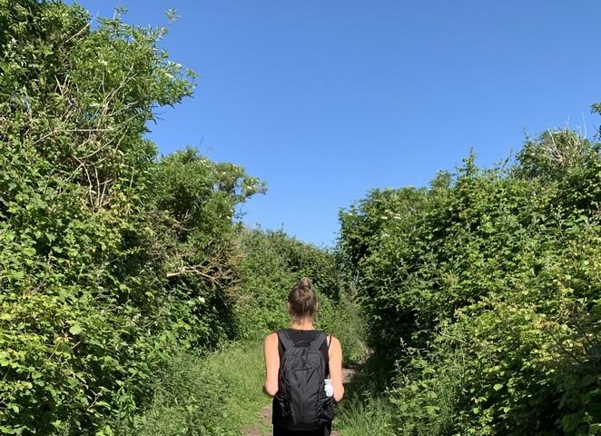 mooie-wandeling-in-nederland