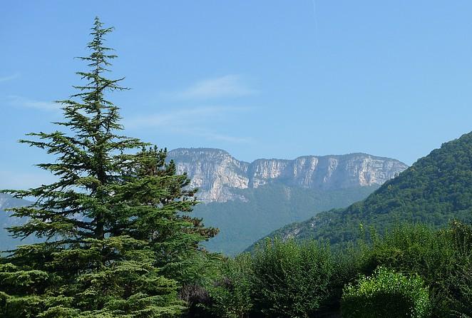 natuur-chambery-massif-de-la-chartreuse
