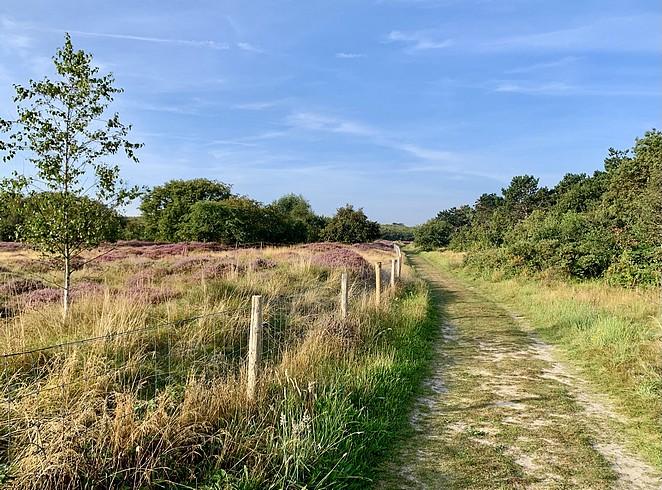 solleveld-heide-wandeling